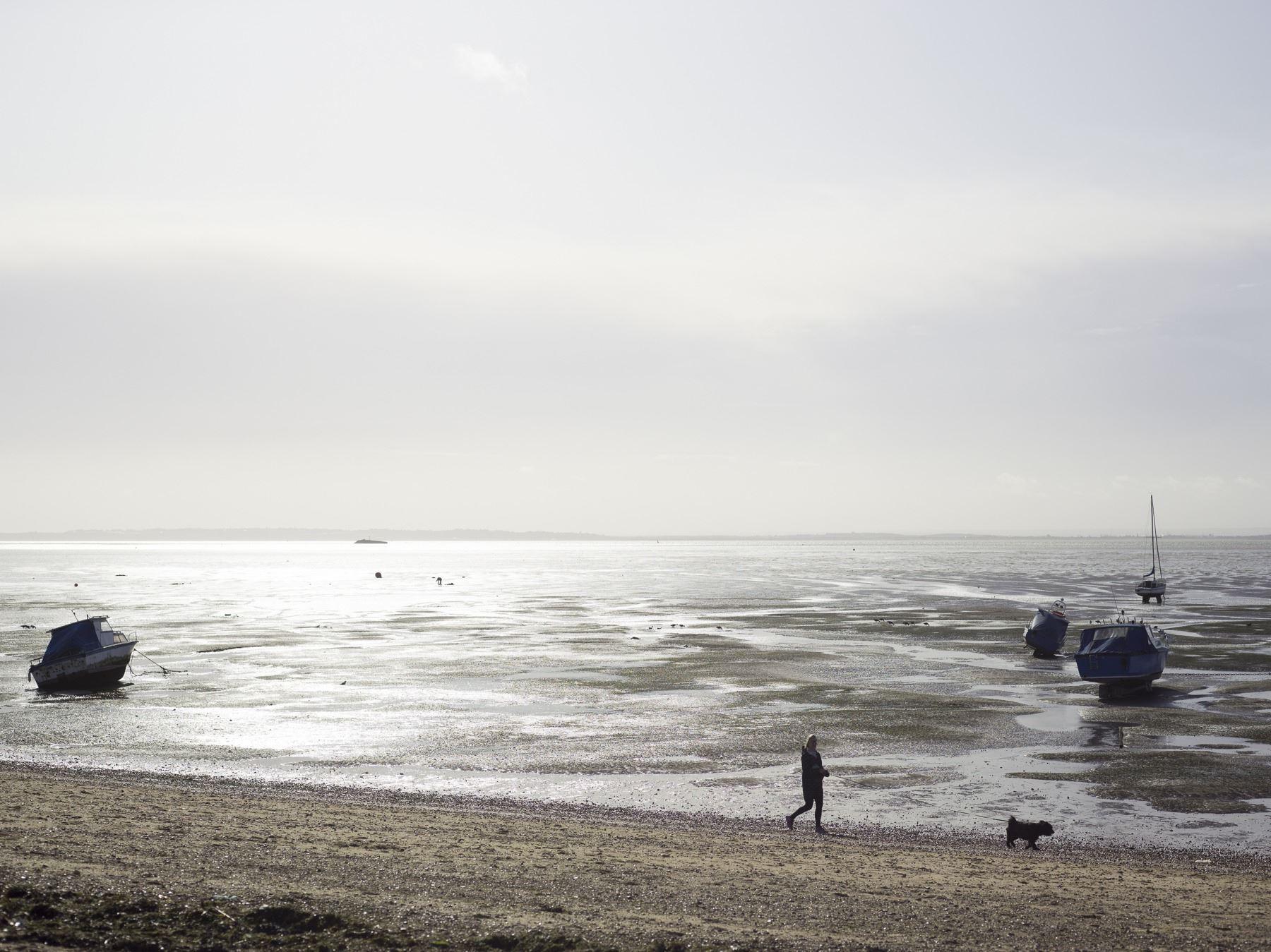 Estuary dog walking